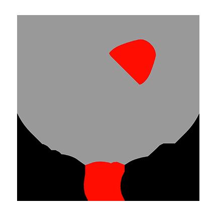 Anacle Logo Website