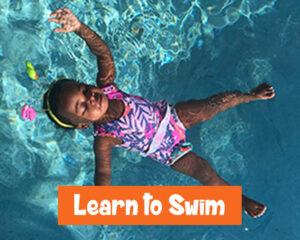learn to swim palm beach