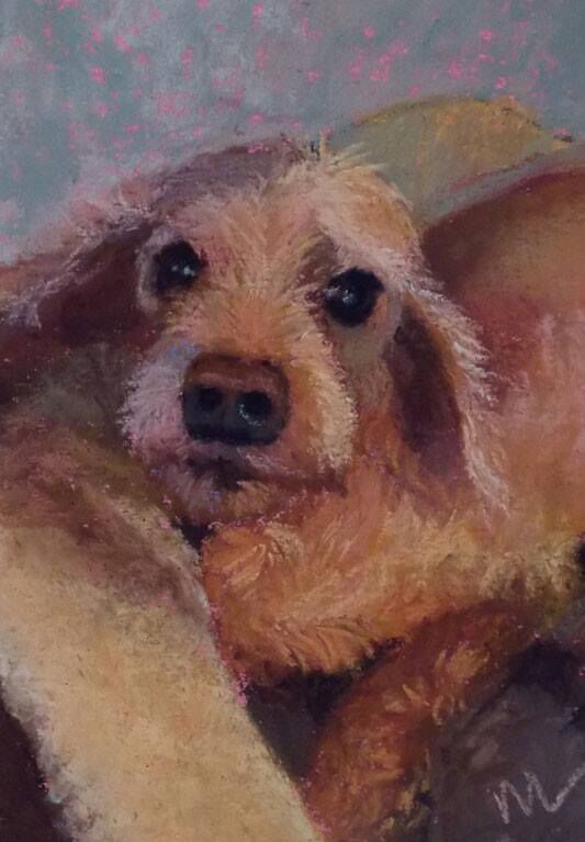 Pet Portrait @ Marie Marfia Art