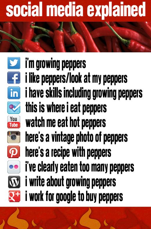 Social Media Explained - Peppers