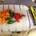 Habanero Hot Sauce Ingredients - Minus the Jalapenos