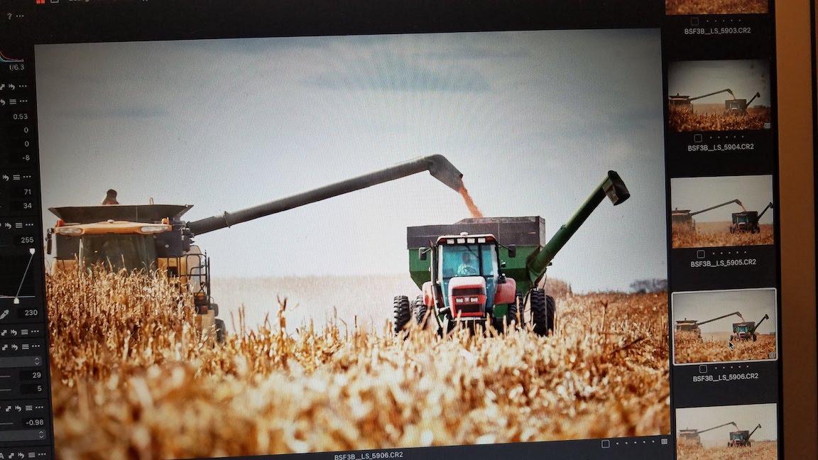 Harvest photo shoot image editing