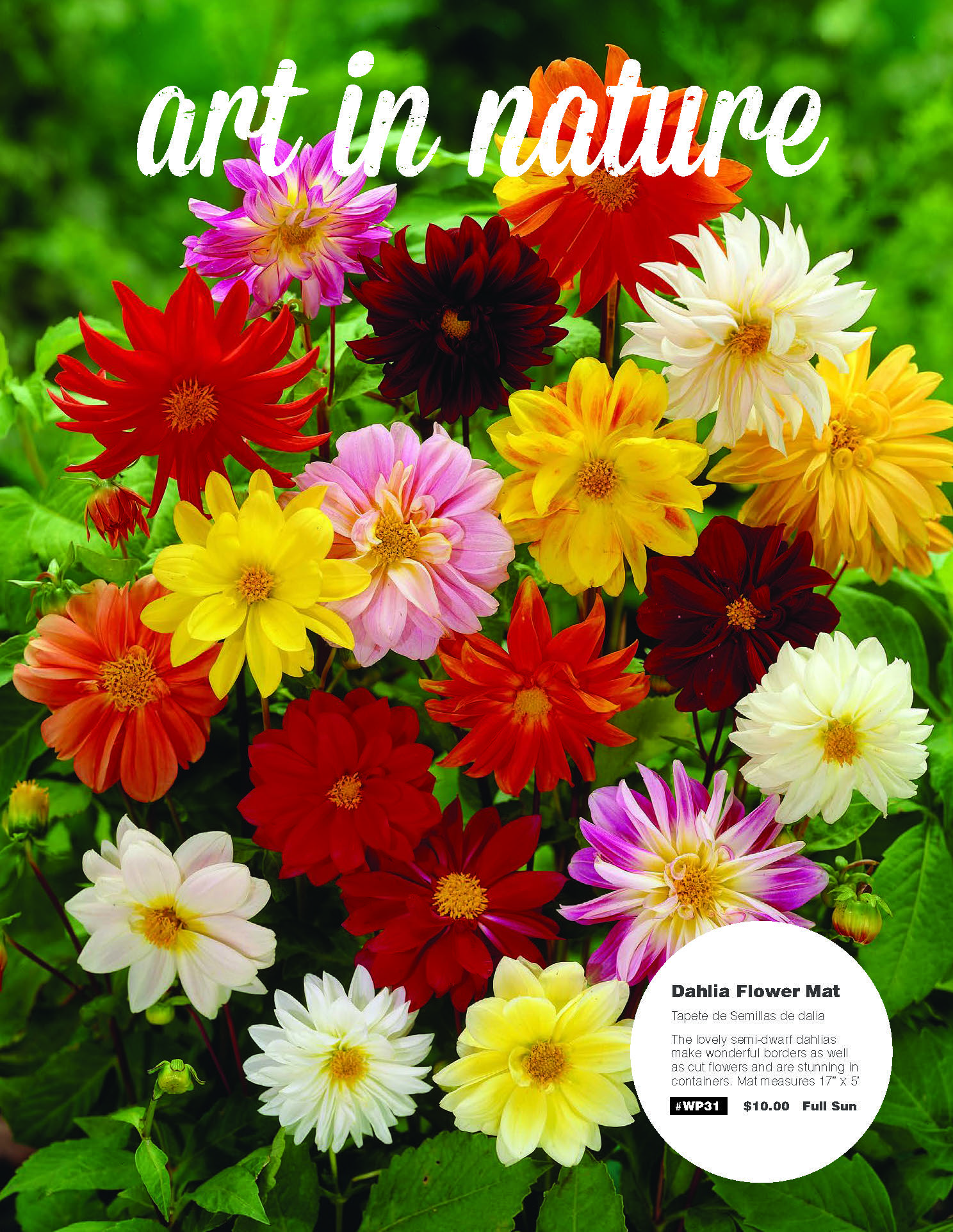 Art in Nature Flower catalog | NW Fundraising