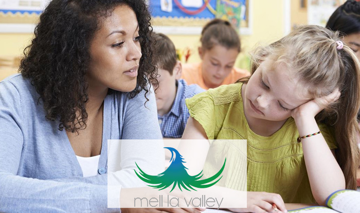 Roseville Childrens Therapist
