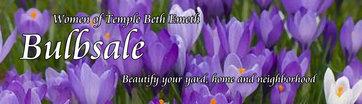 Buy Bulbs to beautify your home and garden