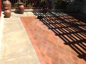 strip and cleaned paver patio