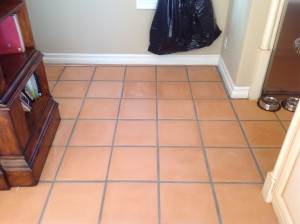 cleaning mexican pavers