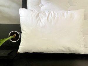 Revue de l'oreiller Silk & Snow