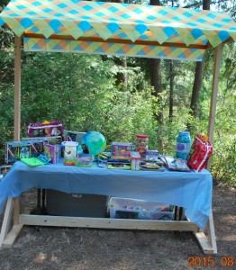 2015-08-15 Prize table at annual picnic 02