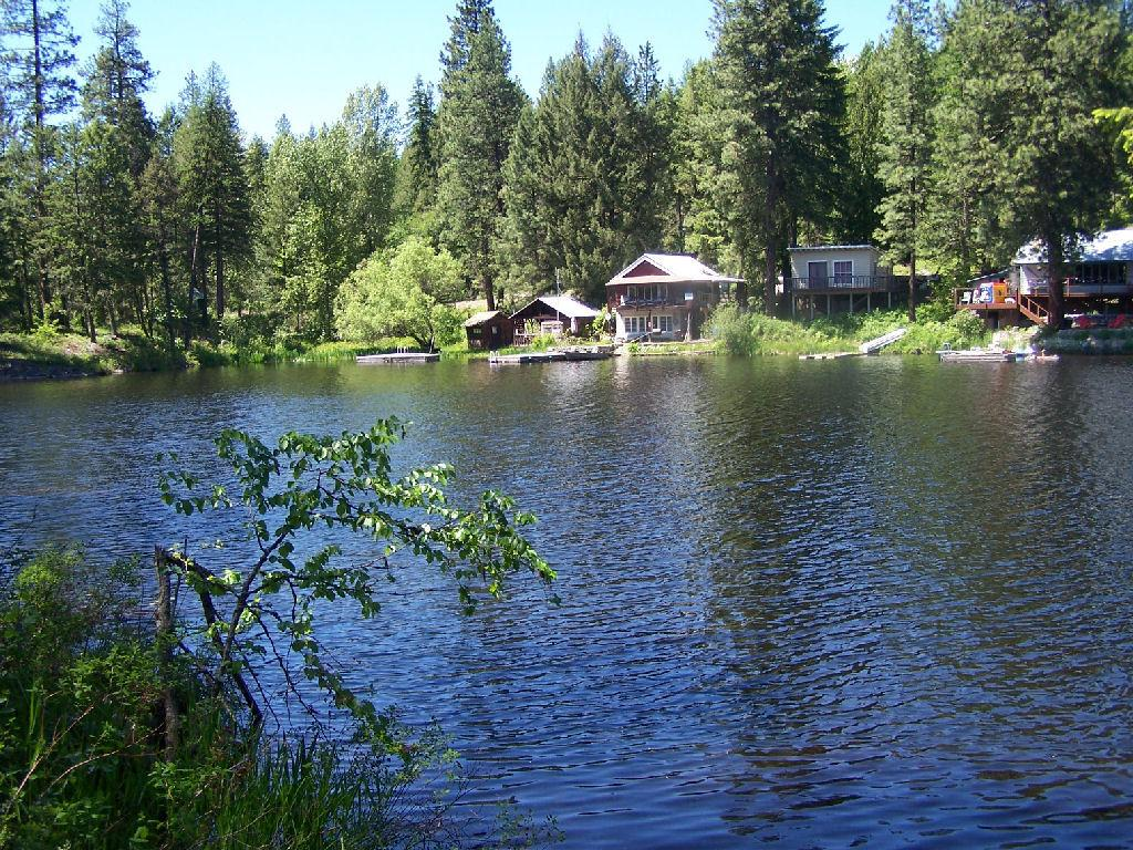 What's New on Sacheen Lake