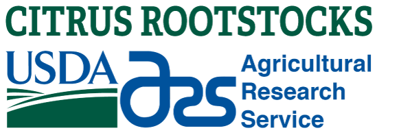 Citrus Rootstocks