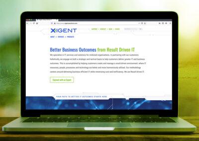 Xigent web 2
