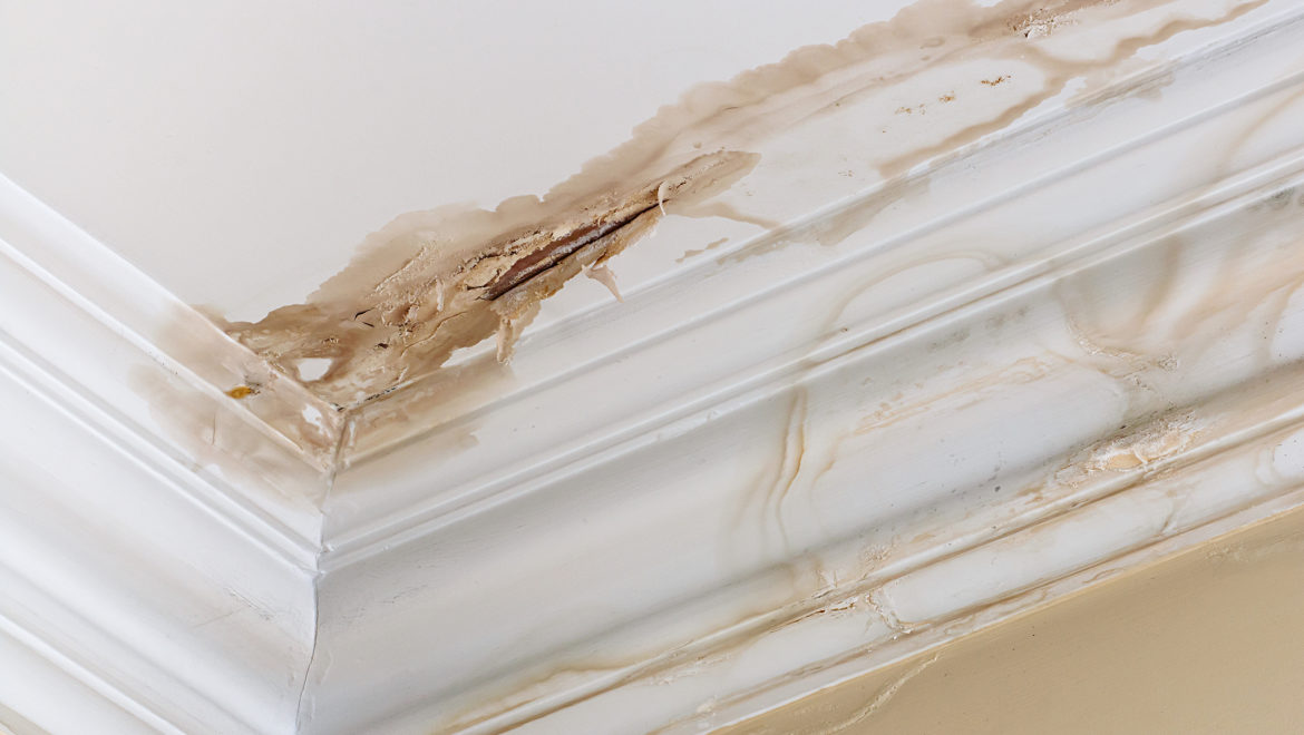 HELP WITH YOUR WATER DAMAGE CLAIM IN MIRAMAR IS JUST A PHONE CALL AWAY!