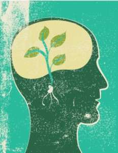 Seed Brain about Neuroplasticity