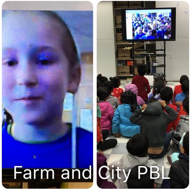Farm and City PBL