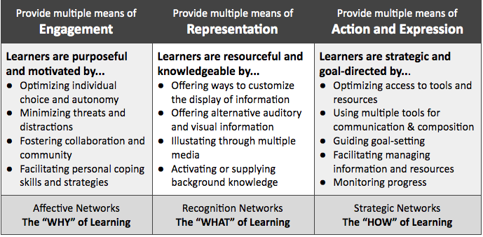 UDL Guidelines with Example Checkpoints
