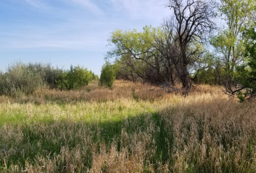 201 2nd Ave. East,Portal,North Dakota 58772,Rural,2nd Ave. East,1289