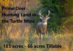 1 Winter Park Road,Bottineau,North Dakota 58318,Hunting Land,Winter Park Road,1315