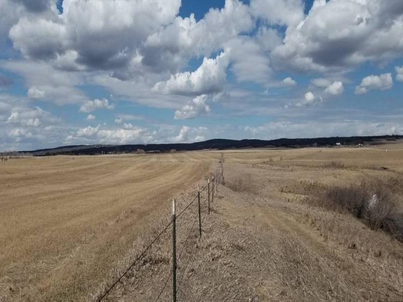 10028 11th Ave. NW,Bottineau,North Dakota 58318,Hunting Land,11th Ave. NW,1403
