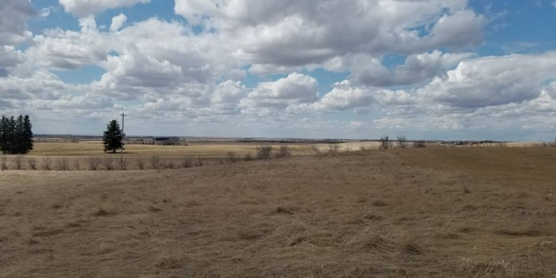 10028 11th Ave. NW,Bottineau,North Dakota 58318,Hunting Land,11th Ave. NW,1403