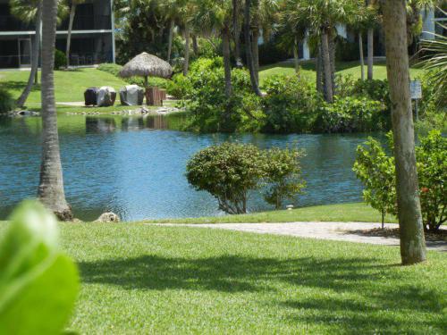 lagoon-view