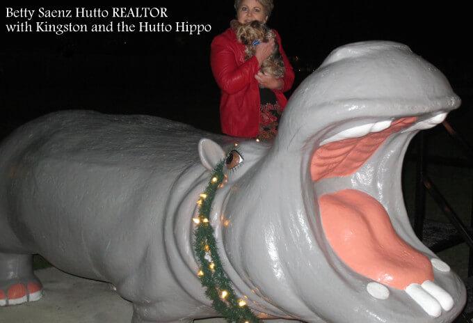 Hutto tx hippo