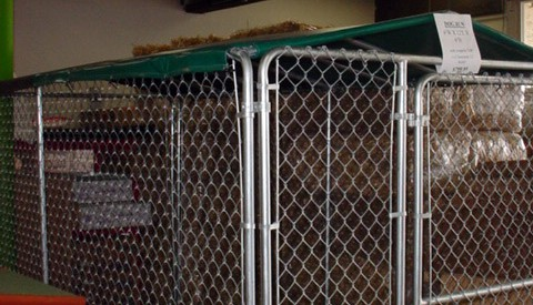 Temporary Dog Kennel