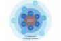Organization Design And Alignment