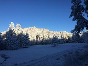 snowday1