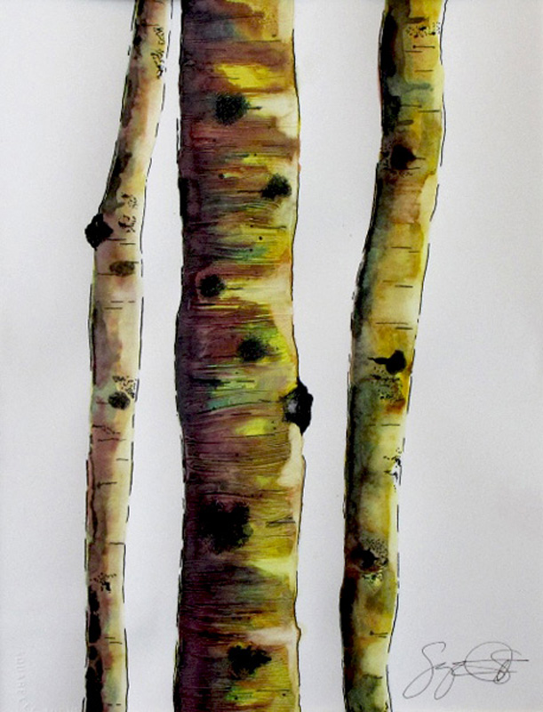 Watercolor, ink, Aspen trees