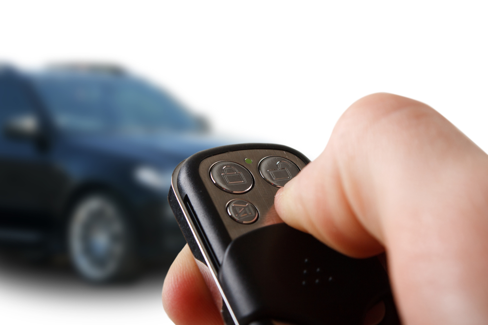 convenience security remote start systems