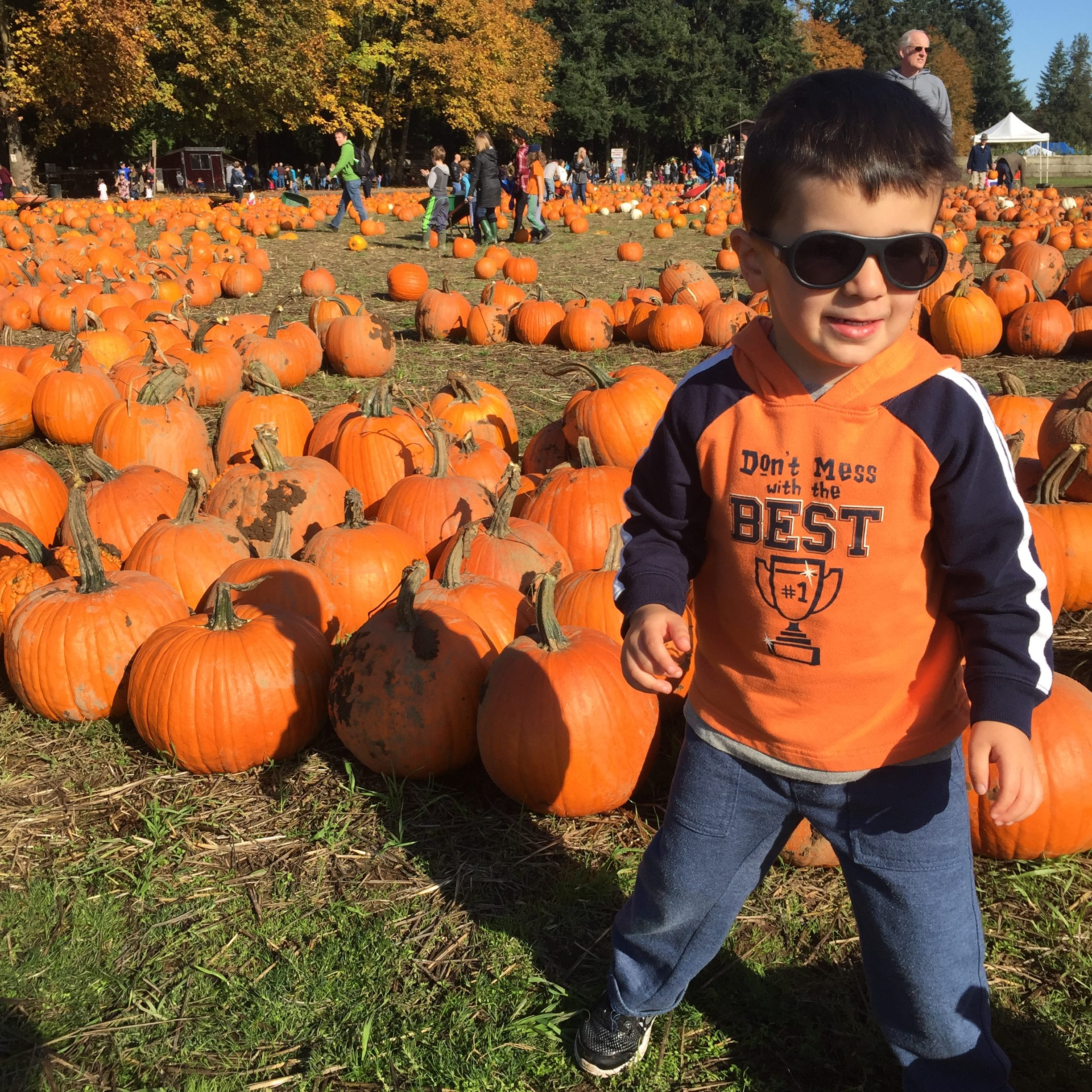Hillsboro Pumpkin patch