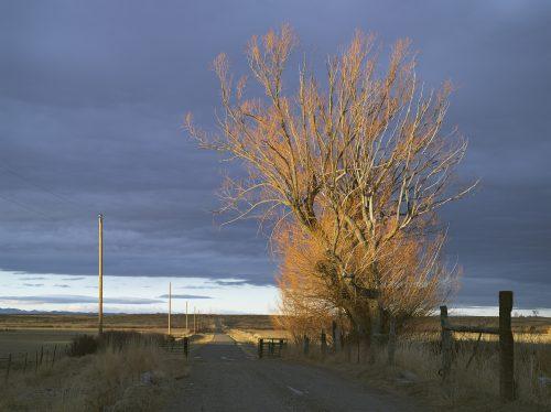 """Driveway, 71 Ranch, Deeth, Nevada,"" archival pigment print, 36"" x 45"""
