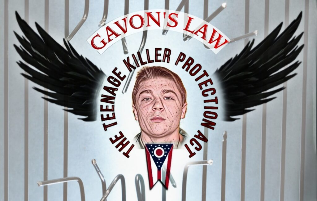 This image has an empty alt attribute; its file name is GAVONS-LAW-1024x648.jpg
