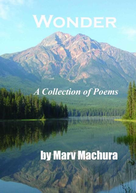 COVER  of Marv Machura book wonder