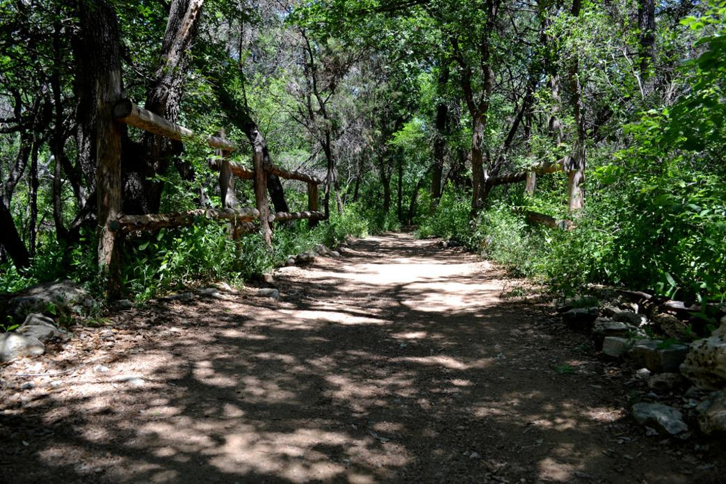 Austin runners can run on the Greenbelt, trail running is a helpful beginner running tip.