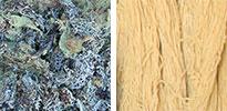 tree moss natural dye