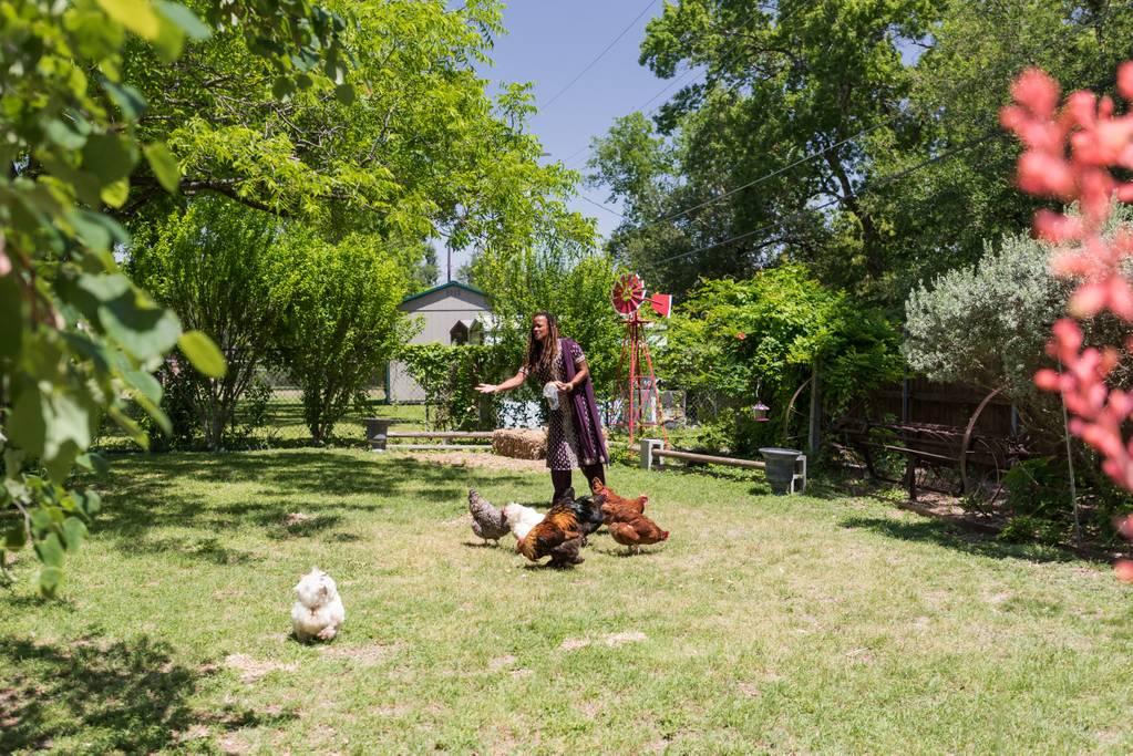 chicken ranch airbnb austin
