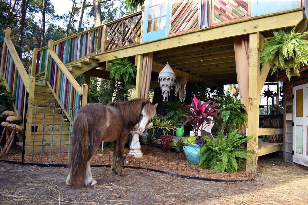 artistic airbnb retreat in historic savannah
