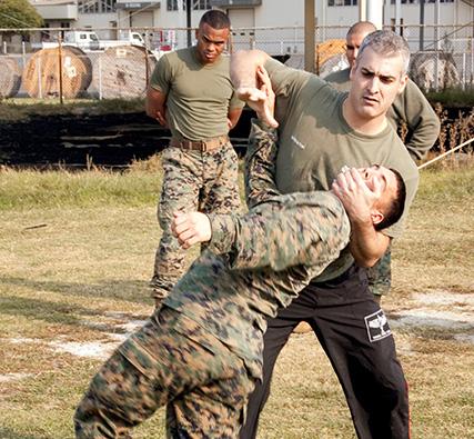 Federation of Israeli Martial Arts