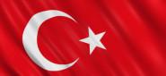 [Article] Mass Arrests in Turkey's Ergenekon Case