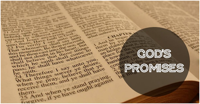Here is a lesson about how God is trustworthy and faithful in all that He promises us. His promises do not rely on us; they rely on Him.