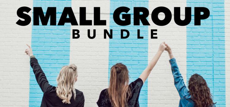 NEW: SMALL GROUP BUNDLE
