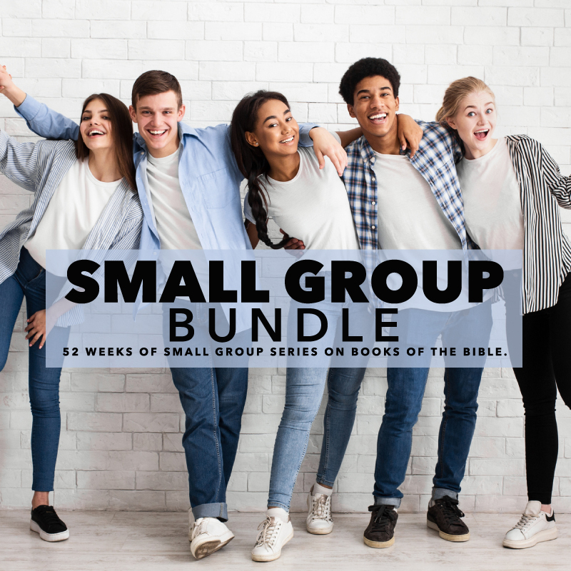 52 weeks of small group youth group lessons on 14 books of the bible.
