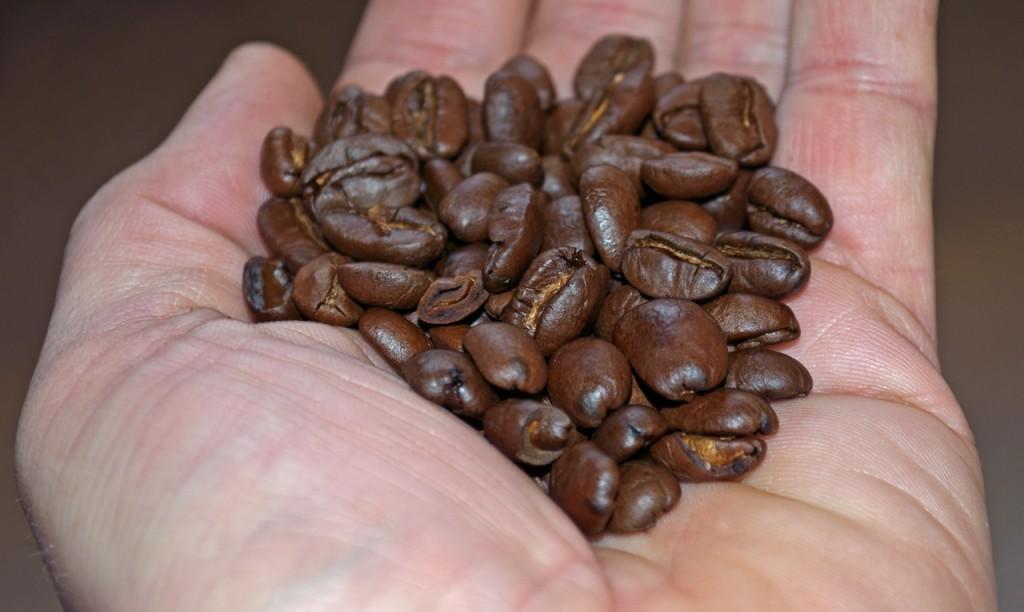 Gepa Bio Maragogype Beans