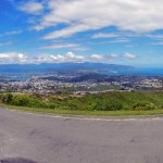 Wellington city and harbour from Hilltop by Windmill