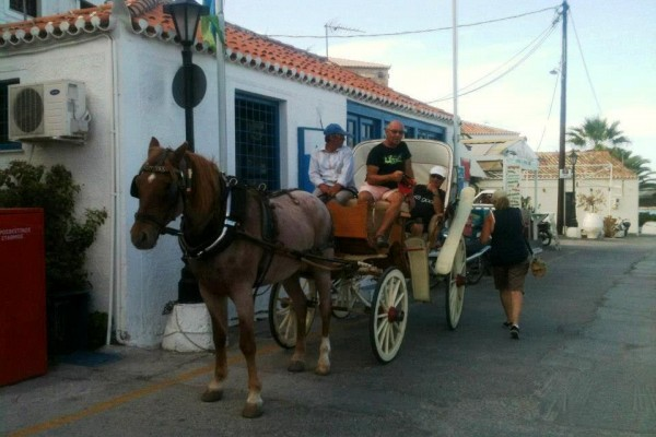 Horse cart for hire