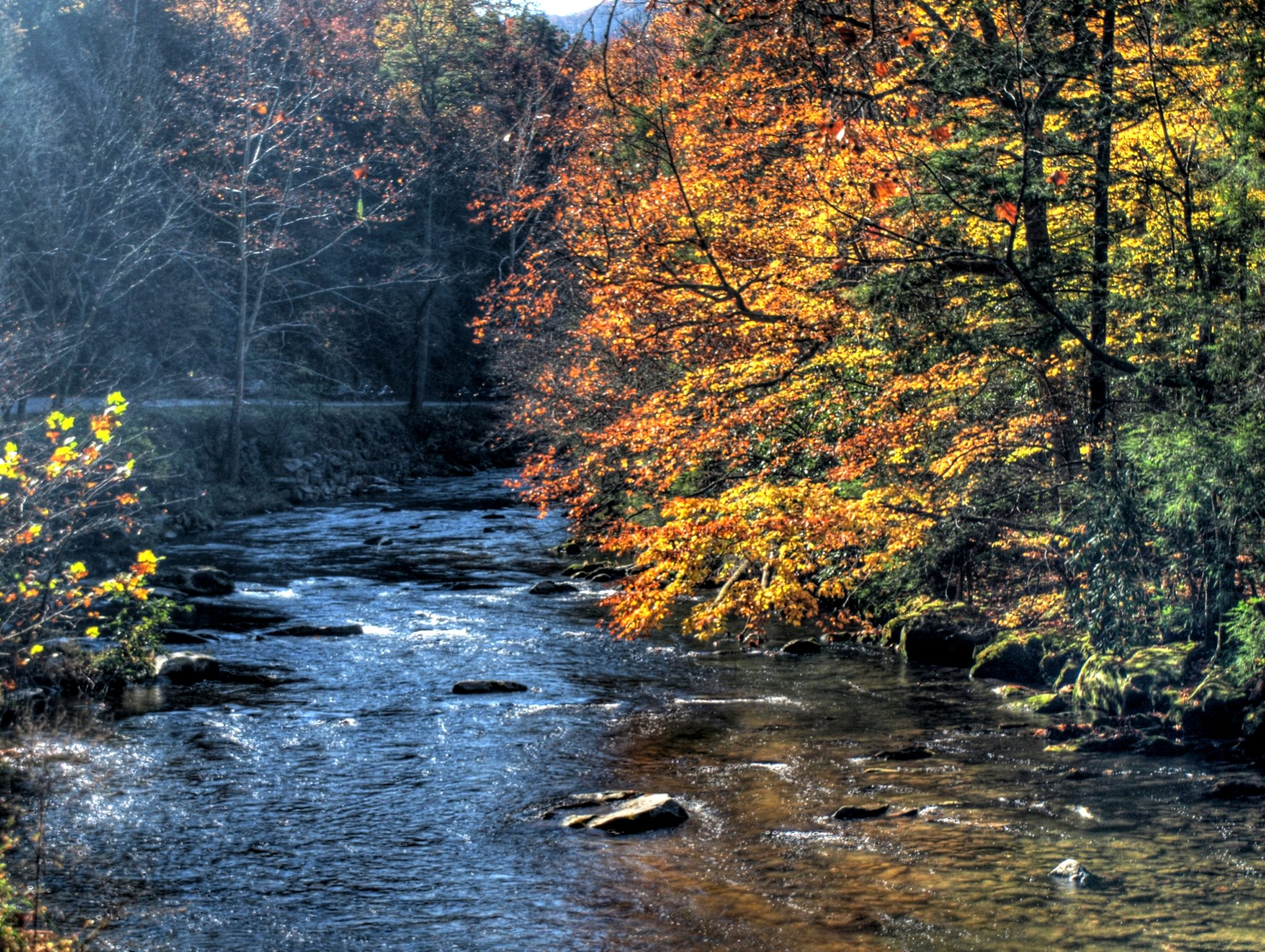 Mountain Stream in October