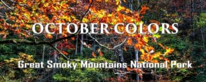 Great Smoky Mountains October Colors