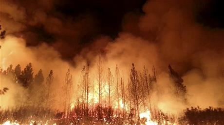 TOURISTS, RESIDENTS FLEE HUGE FIRE NEAR YOSEMITE
